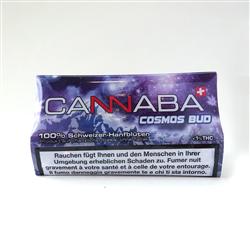 Cosmos Bud