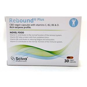 REBOUND Plus